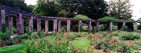 Stone and Wood Arbor at Boerner Botanical Gardens